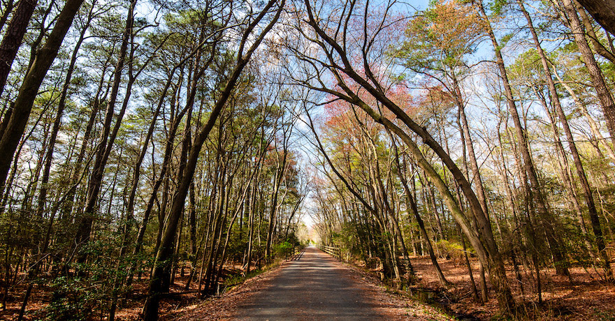 Junction and Breakwater Trail | Courtesy Delaware State Parks