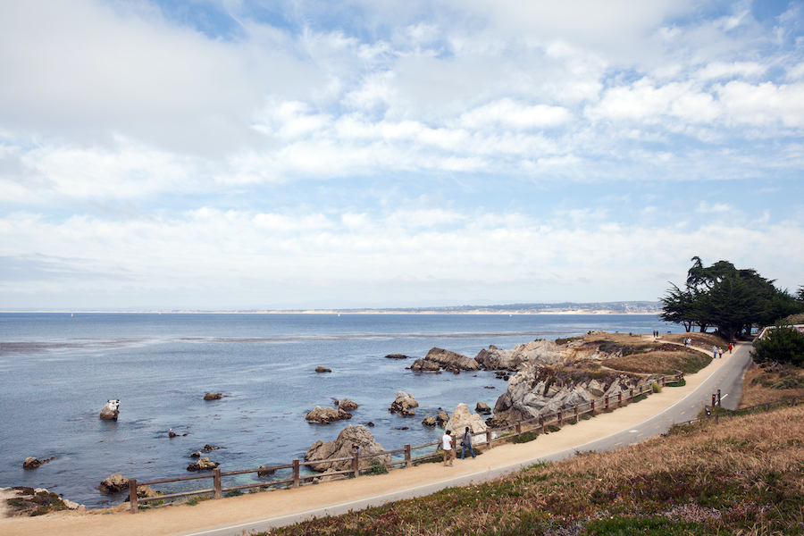 California's Monterey Bay Coastal Recreation Trail | Elizabeth Bean Photography