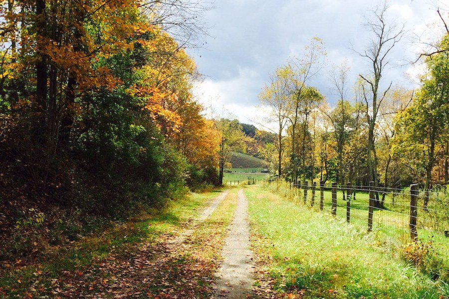 West Virginia's Allegheny Highlands Trail | Photo by Karen Carper, courtesy Highlands Trail Foundation