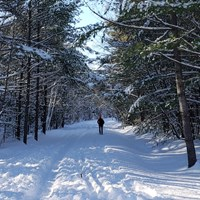 As Trail Use Spikes, Communities Seek Solutions for Safe Use This Winter