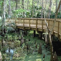 Florida's Spring to Spring Trail