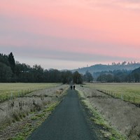 Oregon's Banks-Vernonia State Trail