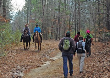Five Common Types of Trail Use Rules (Everyone Should Know)