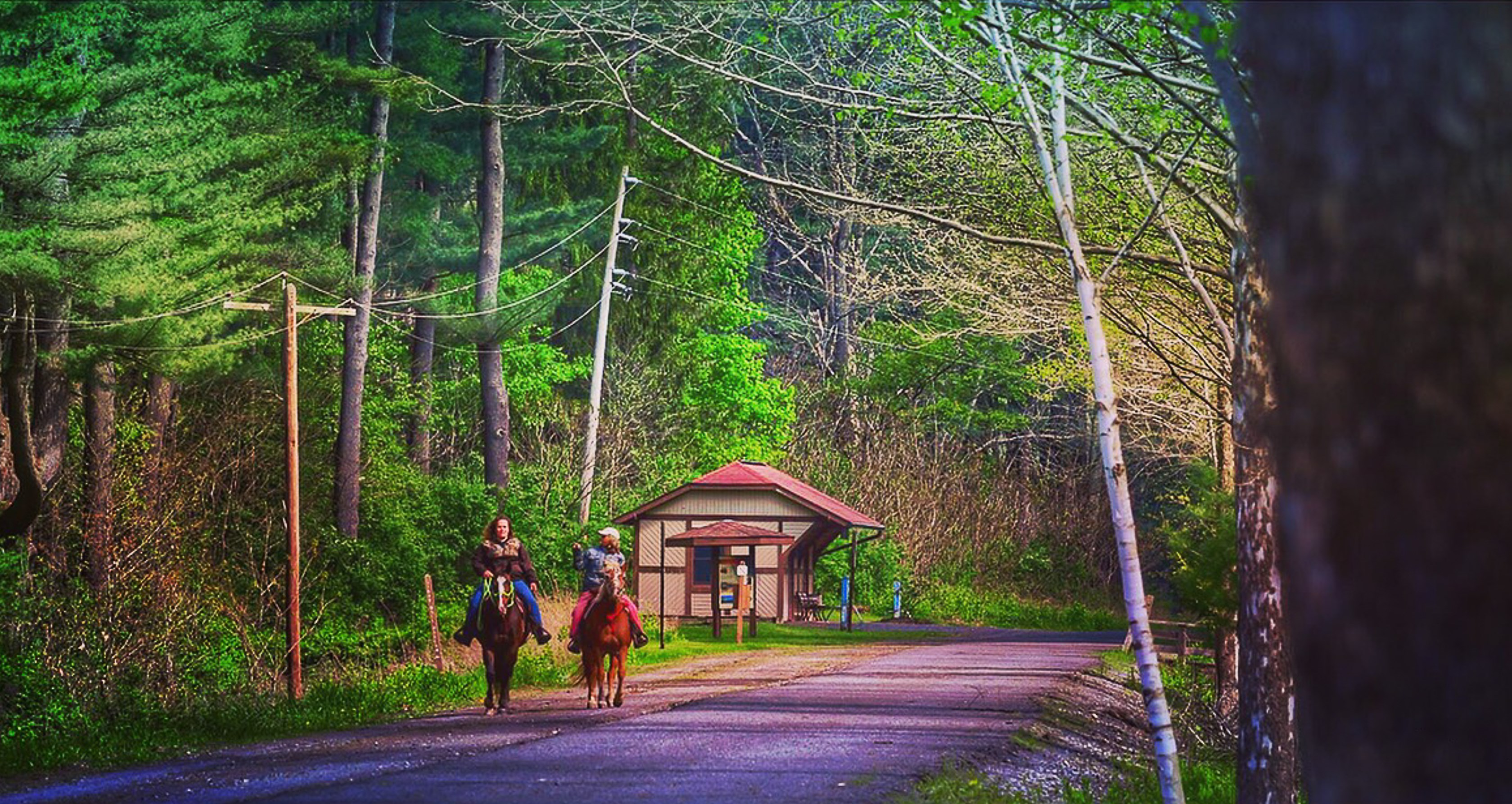 Pennsylvania's Pine Creek Rail Trail