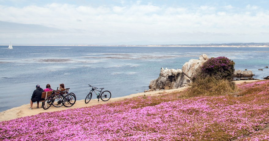 Monterey Bay Coastal Recreation Trail | Photo by Elizabeth Bean Photography