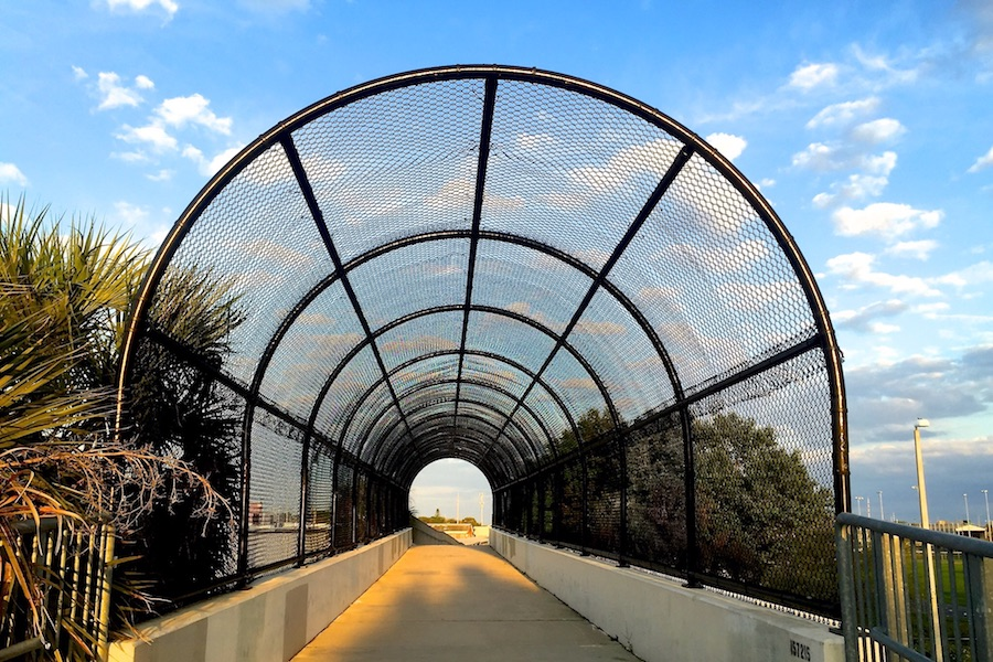 Fred Marquis Pinellas Trail | Photo by TrailLink user Britte Lowther