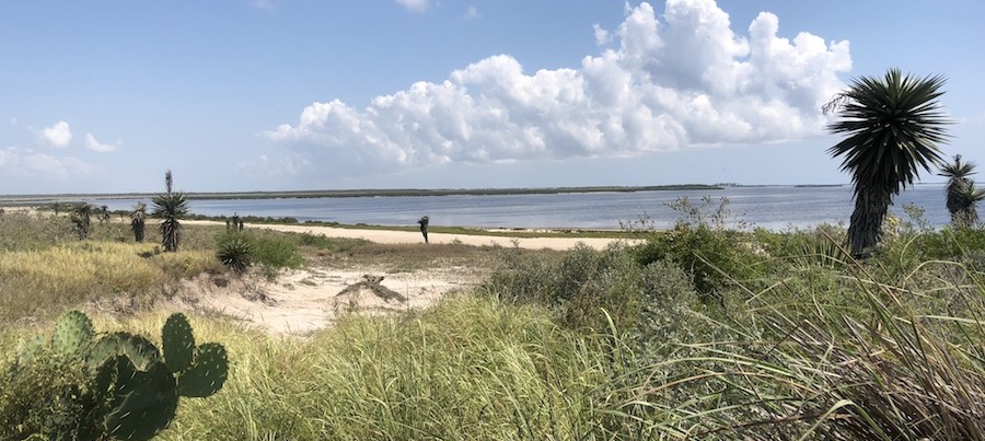 View of the Laguna Madre | Photo by Brandi Horton