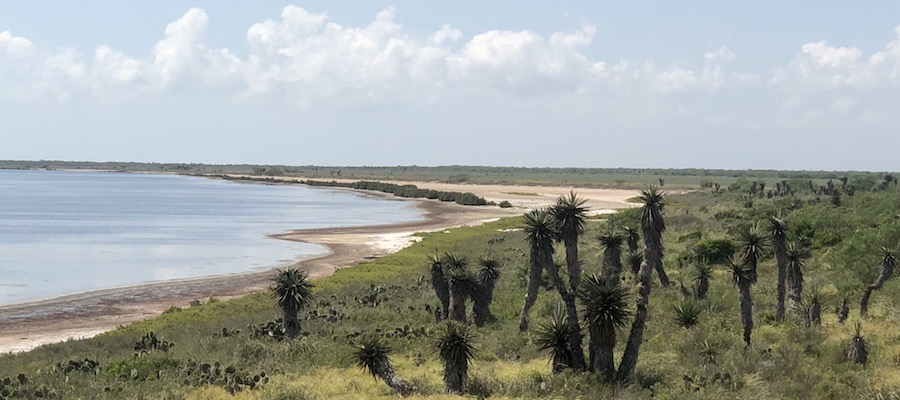 Views of the Laguna Madre from the Laguna Atascosa Plover Point Observation Deck | Photo by Brandi Horton