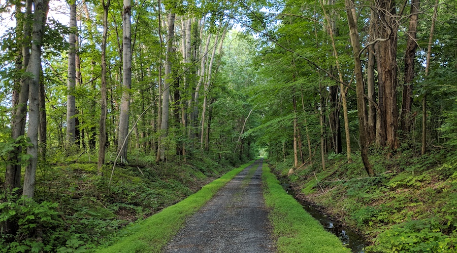 New York's Wallkill Valley Rail Trail | Photo by Brian Housh