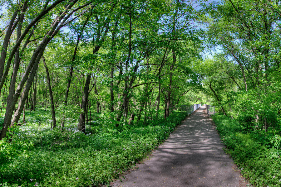 Cedar Valley Nature Trail | Photo by Nathan Houck, courtesy Iowa Natural Heritage Foundation