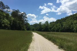 Kentucky's Dawkins Line Rail Trail - Photo by TrailLink user crimefighter560