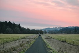 Oregon's Banks-Vernonia State Trail - Photo by Kelly R. Williams