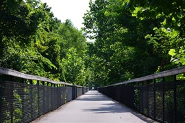 Tennessee's Shelby Farms Greenline - Photo courtesy Shelby Farms Park Conservancy