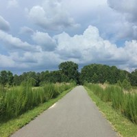 Florida's Palatka-to-Lake Butler State Trail