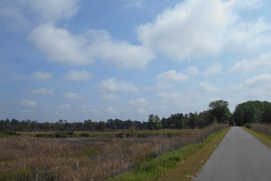 "Palatka-to-Lake-Butler State Trail in Putnam Hall | Photo by John Keatley, courtesy <a href=""https://floridahikes.com/"">Florida Hikes</a>"