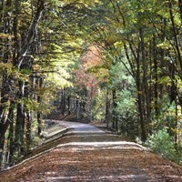 New Hampshire's Londonderry Rail Trail