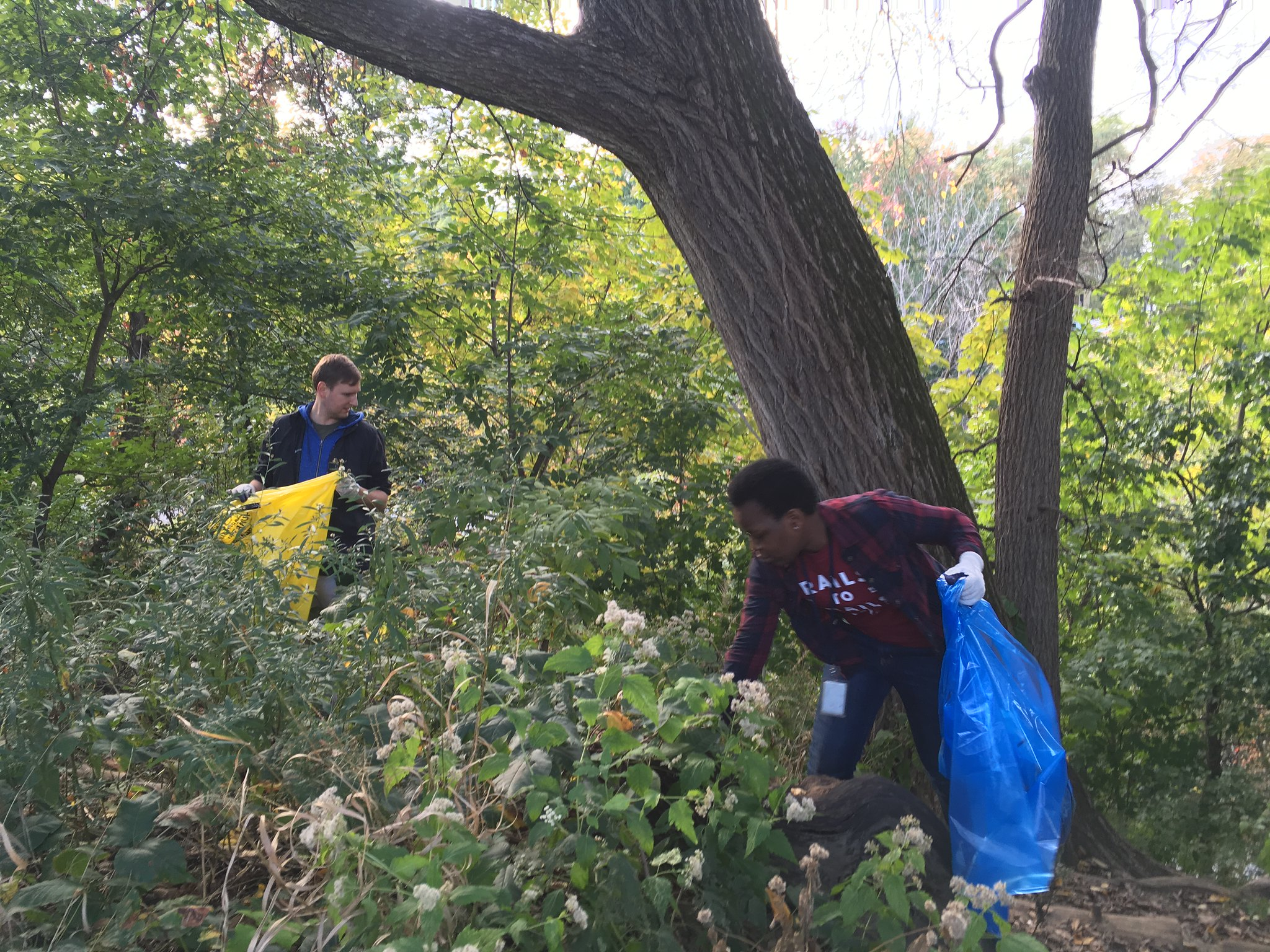 Team RTC cleaning up a section of the Rock Creek Park Trails in Washington, D.C., during Make A Difference Day 2017 | Courtesy Rails-to-Trails Conservancy