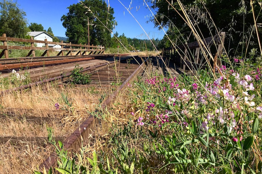 Willits rail-with-trail in California | Photo by Laura Cohen, courtesy RTC