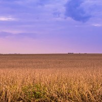 Saving America's Prairies: Illinois Leaders and Rail-Trail Advocates Work to Restore a Dwindling System