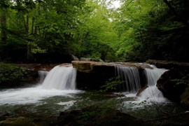 Waterfalls along the Deckers Creek Trail | Photo by TrailLink user photohop